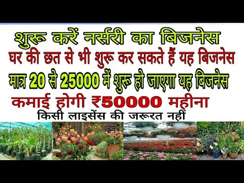 Start Plant Nursery Business On The Roof Of Your House