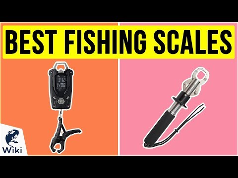 10 Best Fishing Scales 2020