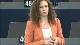 Sophia in 't Veld on Biometric passports