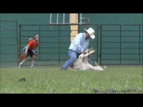 Rodeo Jayuya Vaqueros Youtube