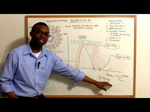 Hepatitis B lecture Video