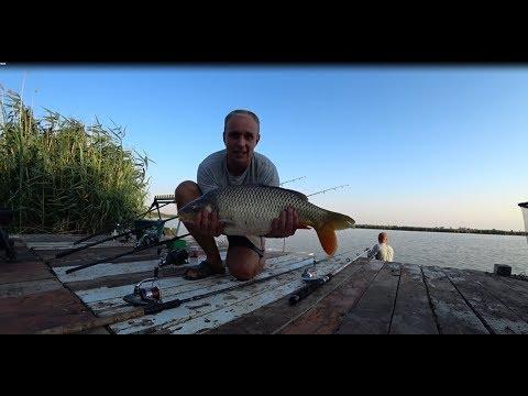 Рыбалка в Перепелкино.Ловля