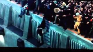 2012 Tamara rescues Caesar