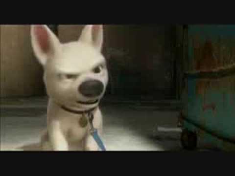 Lighting Dog Films Intro You