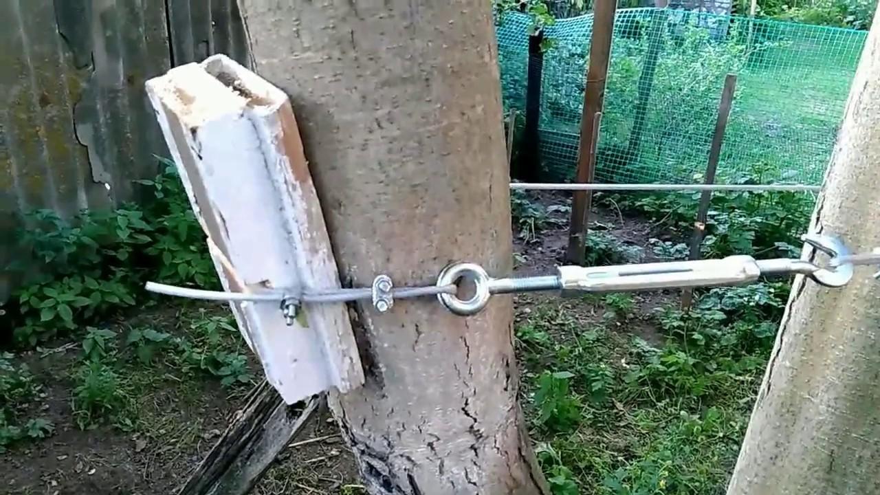Треснул ствол у вишни что делать