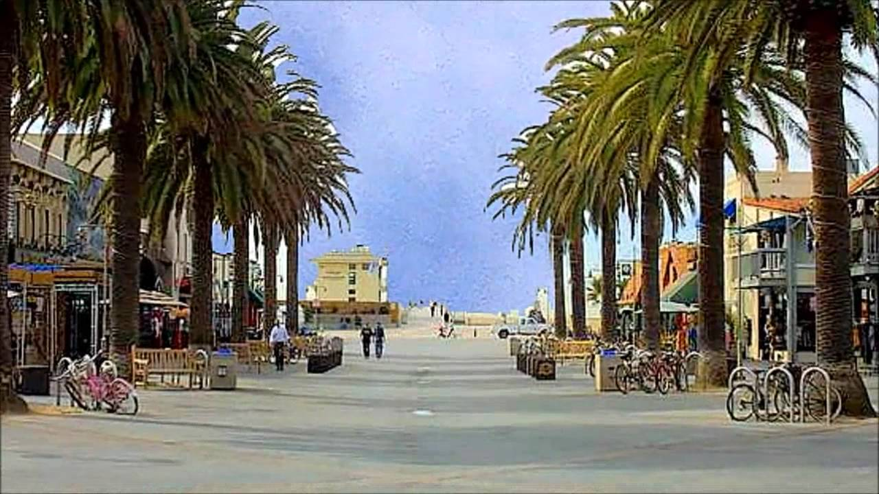 palm tree beach wallpaper hd