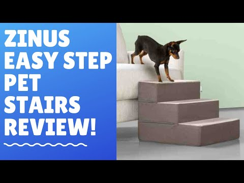 🐈-zinus-easy-step---best-dog-stairs-in-the-market!