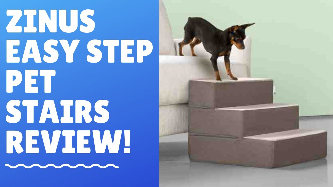 Zinus Easy Step Best Dog Stairs In The Market Youtube