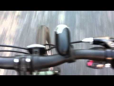 bike ride through mangroves in gorai, mumbai
