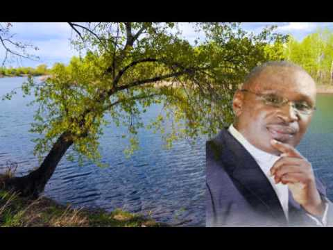 Pastor John E. Lawson   A Tree On Each Side of the River