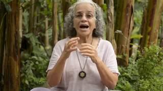 Florais da Amazônia | Curso Elementoterapia Introdutório