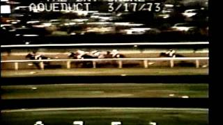 SECRETARIAT - 1973 Bay Shore Stakes