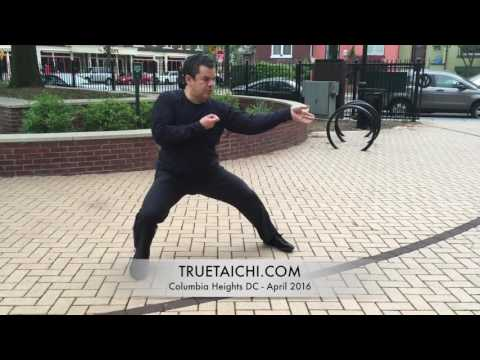 Stephan Berwick's Taijiquan in DC - April 2016