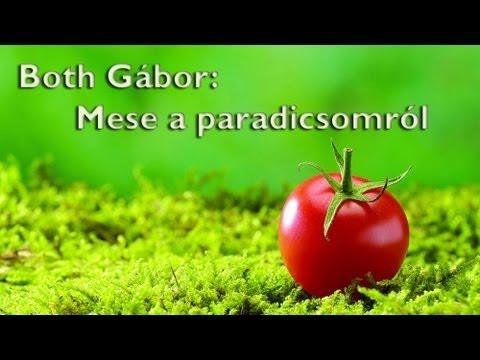 Mese a paradicsomról - Anasztázia 12. videó letöltés