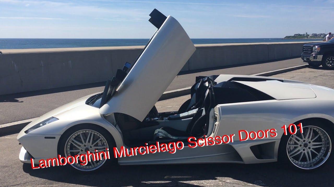 Lamborghini murcielago doors