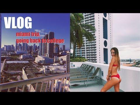 a random vlog: miami trip, going back to college | maddie cidlik