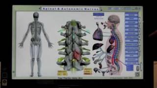 Visual Odyssey Neuropatholator Software