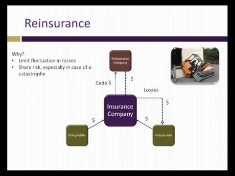 Analysis of insurance companies