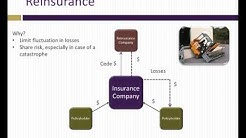Analysis of insurance companies