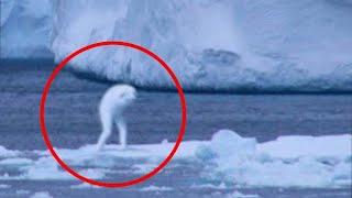EXTINCT Sea Creatures Rumored To Still Be Alive