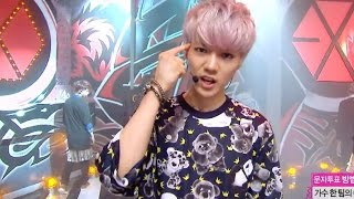 Gambar cover 【TVPP】EXO - Growl, 엑소 - 으르렁 @ Comeback Stage, Show! Music Core Live