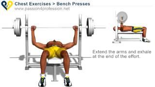 видео Пекторальные мышцы