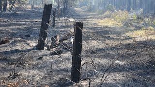Homes Destroyed Across Nsw And Qld
