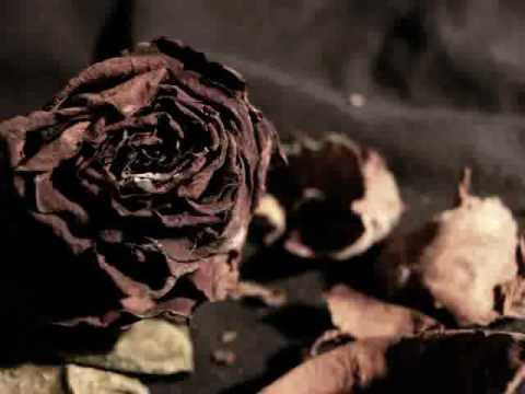 VNV Nation - As It Fades (V2) (Intro's Slow Edit)