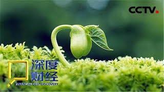 《深度财经》 20190511 中国田里中国种| CCTV财经