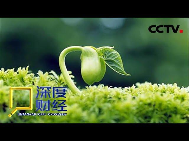 """《深度财经》 中国农业的""""芯片"""" 中国田里中国种 20190511   CCTV财经"""