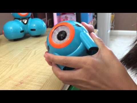 First Day With Dot  - Wonder Workshop Dash & Dot Robot Wonder Pack