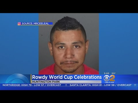 World Cup Reveler Seen On Video Launching Firework At Police