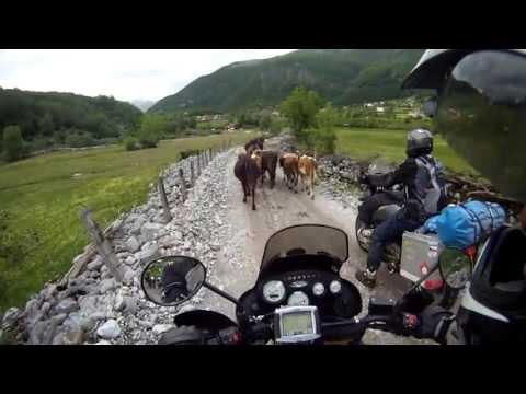 Montenegro krávy Gusinje