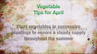 Horticulture Tips for April