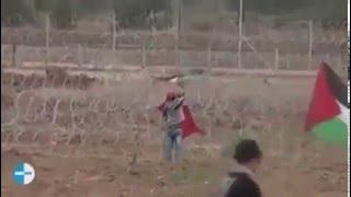 Elinde FİLİSTİN Bayrağı Taşıyan Filistinli Çocuk Şehid Edildi