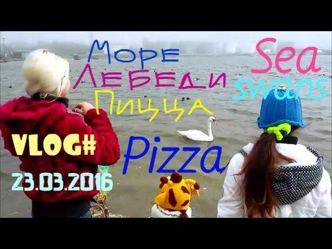 Hotel Magnolia All Inclusive- Bulgariaиз YouTube · Длительность: 1 мин31 с  · Просмотров: 233 · отправлено: 21.06.2017 · кем отправлено: Travels Путешествия
