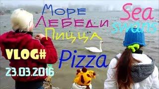 VLOG: Вкусная пицца / Море / Лебеди / Tasty pizza / Sea / Swans(В Одессе весна .. Мы едем в Ильичевск кормить лебедей на паромной переправе и гулять , но все пошло не так..., 2016-03-26T14:13:35.000Z)