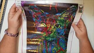 Diamond Painting Unboxing and First Impression - 11th Street Store on Wish - COLORFUL CAT