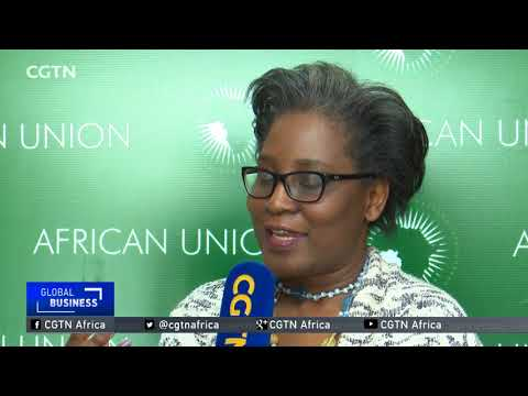 AU Commission saddened, alarmed by Trump's statements
