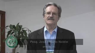 Prof. José Alberto Noldin - III Workshop HRAC-BR
