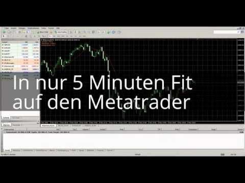 In 5 Minuten Fit auf dem Metatrader - So einfach gehts!