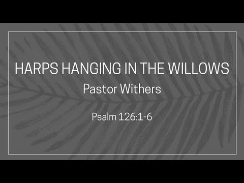 Harps Hanging in the Willows (2/7/2021)