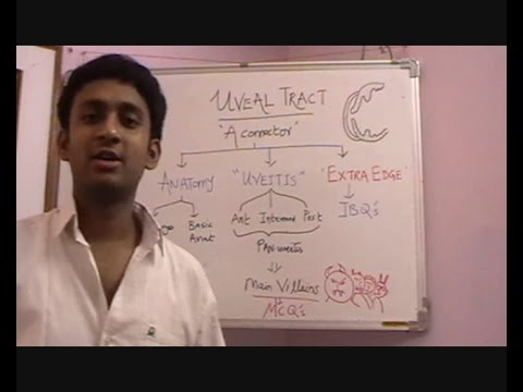 Lecture 3: Uveal Tract Part 1