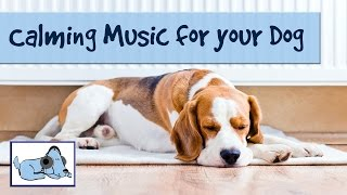 Calming Music for Dogs - Improve Dog Behavior with Relaxing Music