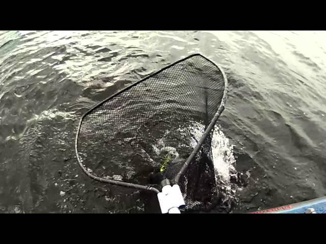 V.I.O. POV.HD  hits the water