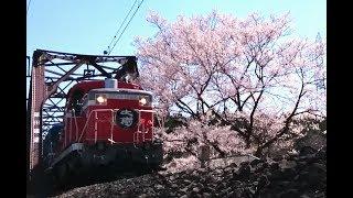 【東武】ドリームカー初日のDL大樹【鬼怒川線】