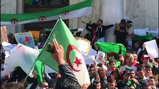 Algerien: Proteste immer größer
