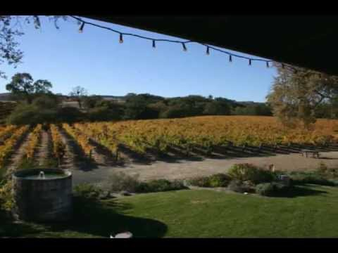 California Vineyard/Property For Sale - Paso Robles, CA - Winery Estate