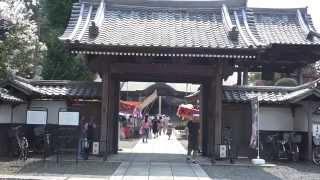 動画内容:毎年8月22日・23日に行われる永福寺の「どじょう施餓鬼」は、...