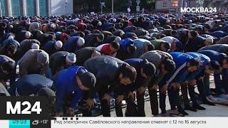 Смотреть видео В Москве введены ограничения в работе транспорта - Москва 24 онлайн